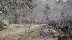 Photo of 1013 Knickerbocker Road, Big Bear Lake, CA 92315 (MLS # 3174110)