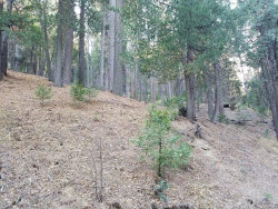Photo of 0 Mojave River Road, Cedarpines Park, CA 92322 (MLS # 3174147)