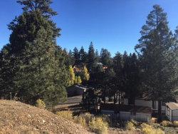 Photo of 212 Mann Drive, Big Bear City, CA 92314 (MLS # 3175186)
