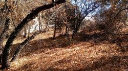 Photo of 650 Villa Grove, Big Bear City, CA 92314 (MLS # 3175289)