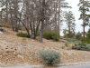 Photo of 324 Starlight Circle, Big Bear Lake, CA 92315 (MLS # 3175326)