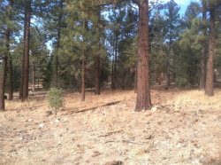 Photo of 0 Mahogany Place, Big Bear City, CA 92314 (MLS # 3175377)