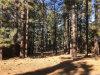 Photo of 41610 McWhinney Lane, Big Bear Lake, CA 92315 (MLS # 3180186)