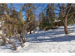 Photo of 0 Raccoon Drive, Fawnskin, CA 92333 (MLS # 3181402)