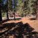 Photo of 42055 Winter Park Drive, Big Bear Lake, CA 92315 (MLS # 3182584)