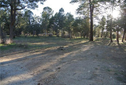 Photo of 0 Santa Barbara Avenue, Sugarloaf, CA 92386 (MLS # 3183729)