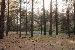 Photo of 0 Catalina Road, Big Bear Lake, CA 92315 (MLS # 3185011)