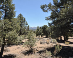 Photo of 00000 North Camino Bosque N Drive, Big Bear City, CA 92314 (MLS # 3185204)