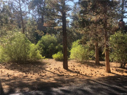Photo of 517 Bernhardt Lane, Big Bear City, CA 92314 (MLS # 3187732)