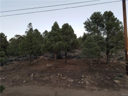 Photo of 0 Upland Drive, Big Bear City, CA 92314 (MLS # 3189044)