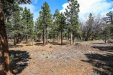 Photo of 0 Cedar Glen Drive, Big Bear City, CA 92314 (MLS # 31900084)