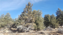 Photo of 00 Pioneertown Rd, Big Bear City, CA 92314 (MLS # 31900097)