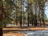 Photo of 776 Knickerbocker Road, Big Bear Lake, CA 92315 (MLS # 31906127)