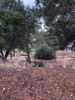 Photo of 390 Pine Lane, Big Bear City, CA 92314 (MLS # 31907719)