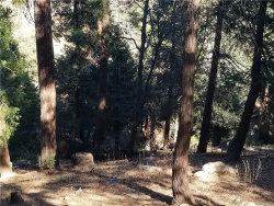 Photo of 0 Deer Run Road, Cedarpines Park, CA 92322 (MLS # 31910308)