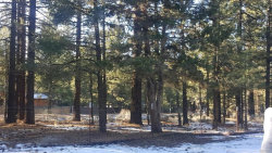 Photo of 2049 Cedar Lane, Big Bear City, CA 92314 (MLS # 31911486)