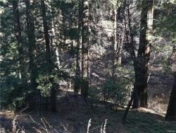 Photo of 0 Burnt Mill Canyon Rd, Cedarpines Park, CA 92322 (MLS # 32000190)