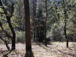 Photo of 170 Fern Hill Road, Cedarpines Park, CA 92322 (MLS # 32000220)