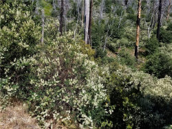 Photo of 0 Coulter Drive, Lake Arrowhead, CA 92352 (MLS # 32000352)