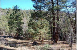 Photo of 1275 Fawnskin Drive, Fawnskin, CA 92333 (MLS # 32000376)