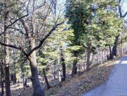 Photo of 1279 Pigeon Road, Big Bear Lake, CA 92315 (MLS # 32000442)