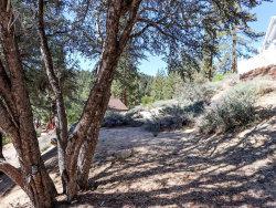 Photo of 0 Cedar Dell Road, Fawnskin, CA 92333 (MLS # 32004136)