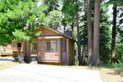 Photo of 691 Ivy Lane, Lake Arrowhead, CA 92352 (MLS # 3173157)