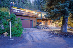Photo of 1003 Knickerbocker Road, Big Bear Lake, CA 92315 (MLS # 3173911)