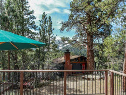 Photo of 1059 Butte Avenue, Big Bear City, CA 92314 (MLS # 31903625)