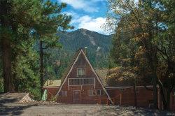 Photo of 43556 Sheephorn Road, Big Bear Lake, CA 92315 (MLS # 31910313)