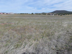 Photo of 0 S Zachariae Ranch Road, Lot 5, Young, AZ 85554 (MLS # 4348930)