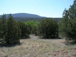 Photo of 49564 N 288 Highway, Lot 1, Young, AZ 85554 (MLS # 5243353)