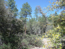 Photo of 202 S Fred's Road, Lot 2, Young, AZ 85554 (MLS # 5453703)