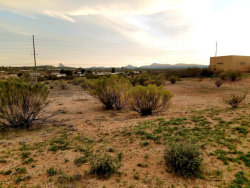 Photo of 2605 W Pinto Place, Lot 17, Wickenburg, AZ 85390 (MLS # 5565761)
