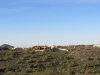 Photo of 11013 N Buffalo Drive, Lot 24, Fountain Hills, AZ 85268 (MLS # 5574219)