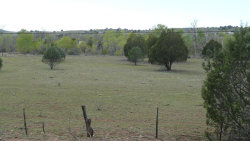 Photo of 255 E Granny Jones Lane, Lot 0, Young, AZ 85554 (MLS # 5589136)