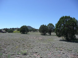 Photo of 425 S Rolling Hills Road, Lot 0, Young, AZ 85554 (MLS # 5596206)