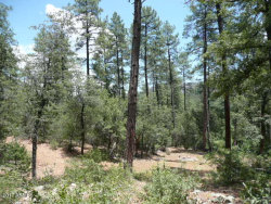 Photo of 15 N Jack Mountain Loop, Lot 15, Young, AZ 85554 (MLS # 5631284)
