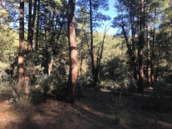 Photo of 1 S Fred's Road, Lot -, Young, AZ 85554 (MLS # 5667650)