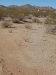 Photo of 29280 N Bryce Trail, Lot -, Queen Creek, AZ 85142 (MLS # 5697631)