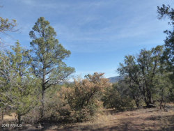 Photo of 165 W Mail Trail Road, Lot A-1, Young, AZ 85554 (MLS # 5722731)