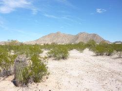 Photo of 11592 N Fantail Trail, Lot 15, Casa Grande, AZ 85194 (MLS # 5739267)