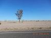 Photo of 3300 N Parkview Drive, Lot 25, Eloy, AZ 85131 (MLS # 5743031)