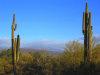 Photo of 17320 E Pinnacle Vista Drive, Lot -, Rio Verde, AZ 85263 (MLS # 5752851)