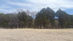 Photo of 49969-A N Az Highway 288 Highway, Lot 0, Young, AZ 85554 (MLS # 5754259)