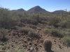 Photo of 44251 N 22nd Street, Lot 4, New River, AZ 85087 (MLS # 5763716)
