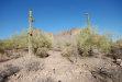 Photo of 3170 N Prospectors Road, Lot D, Apache Junction, AZ 85119 (MLS # 5769981)