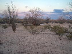 Photo of 21985 E Florence Kelvin Highway, Lot -, Florence, AZ 85132 (MLS # 5784894)