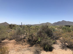 Photo of 40185 N 107th Place, Lot 158, Scottsdale, AZ 85262 (MLS # 5784937)