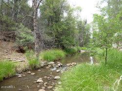 Photo of 355 W Haigler Lane, Lot -, Young, AZ 85554 (MLS # 5786748)